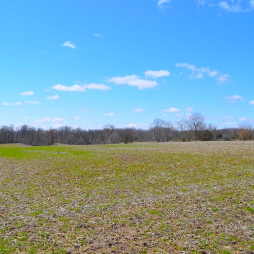 19 Acres of Farm Ground and Personal Property Auction