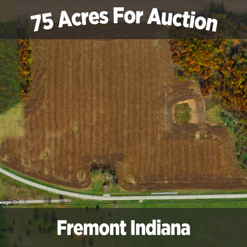75 acres for auction in Fremont Indiana