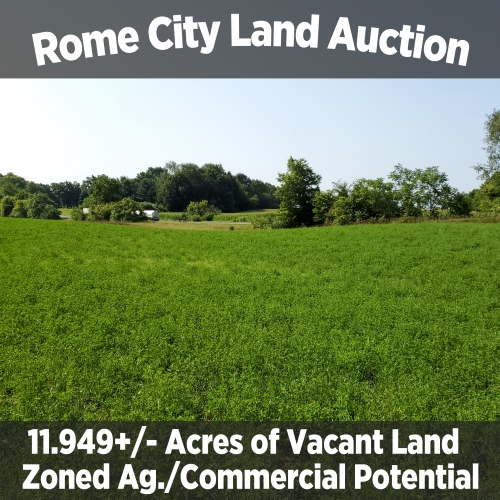 11.949+/- Acres of Vacant Land in Rome City