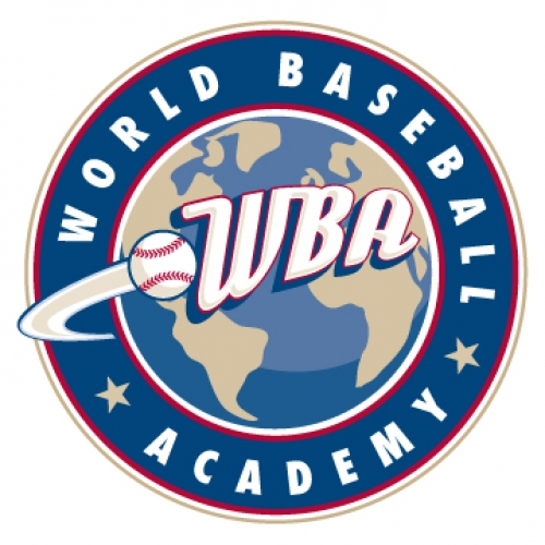 2017 World Baseball Academy Benefit Auction