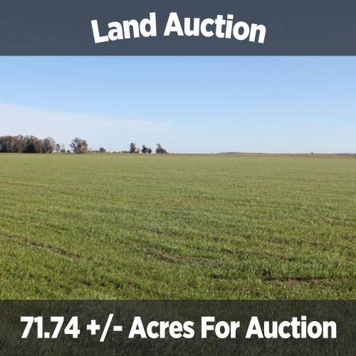 71.74+/- acres for auction in Huntington Indiana
