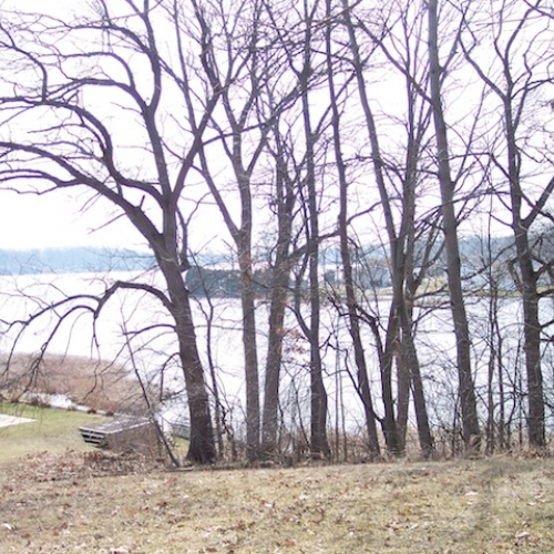 Big Long Lake | Lakefront Lot