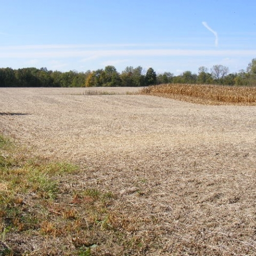 79+/- Acres in Huntington Co.